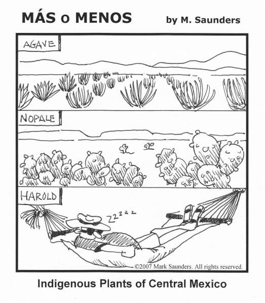 MasoMenos_Plants